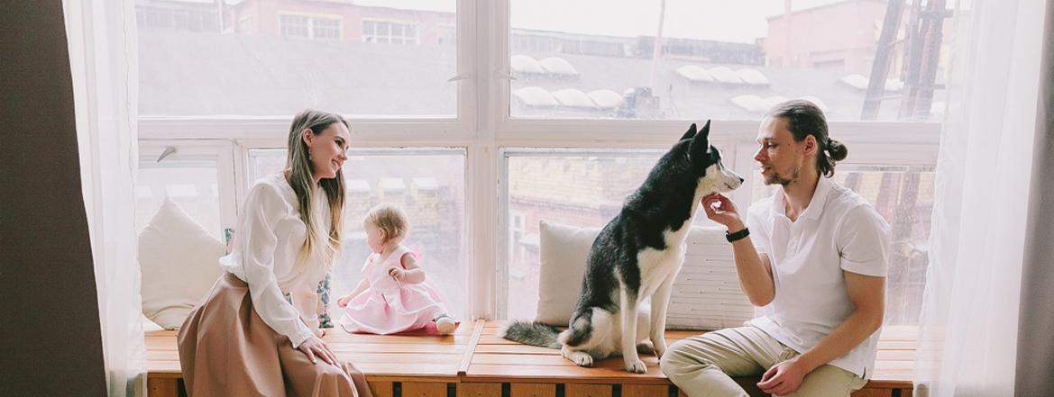новогодняя фотосессия с ребенком хаски